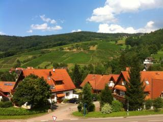Ferienapp. Sasbachwalden (max. 3 Pers.)