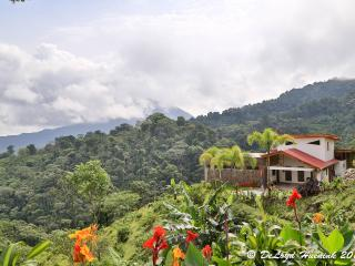 Surrounded by Rainforest, cloud forest, plants and nature this is a place of spiritual beauty.
