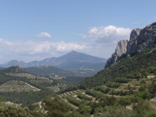 Provence vacances, Carpentras