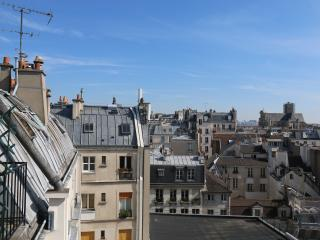 Les Toits de NOTRE-DAME ! Newly Renovated Studio !, Paris