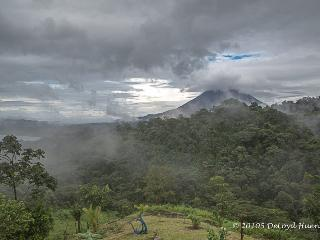 The Cloud forest as seen from the terrace at sunrise
