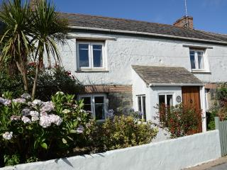 .......hydrangeas and Cornish Palm awaits you!