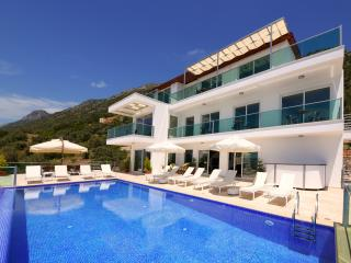 Villa Montana: 7 bedrooms, luxury, fabulous views!