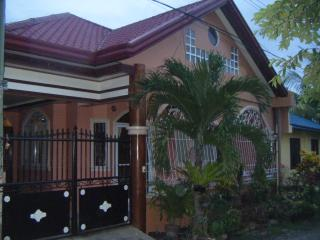 Furnished spacious house for rent