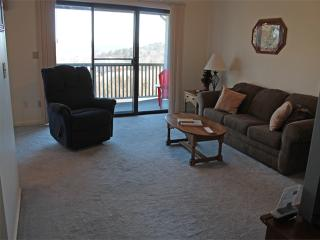1 Bedroom 1 Bath Private Deck Units - 510, Indian Point