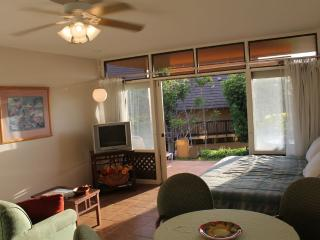 Ocean View Studio- West Molokai Resort #!226, Maunaloa