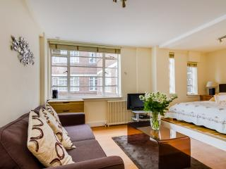 Chic comfy serviced studio Chelsea Zone 1 sleeps 4