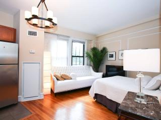 Exquisitely Furnished Studio- AdMo, Washington DC