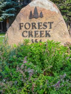 Forest Creek #11