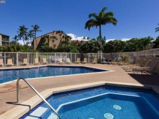 LUXURY 2 bedroom 2 bathroom South Kihei Maui HAWAII Vacation Rental Condo