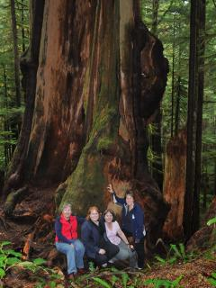 Renfrew is home to some of Canada's largest living trees! Be in their awesome presence