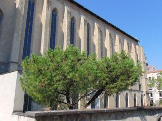 La Finestra Sul Monastero Chiostro