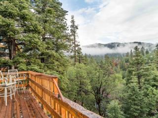 4 BR Ski Slopes, Lake and Sunset Views. Near Bear Mountain & Forest Trails.