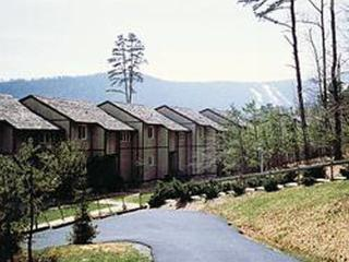 Massanutten's Mountainside Villas - 2BR/Sleeps 8, McGaheysville