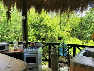 You will love your coffee in the morning surrounded y hundreds of singing exotic birds,