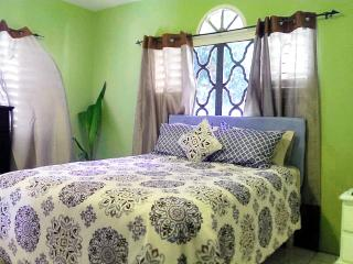 2 Bedroom Apartment near Montego Bay with Hot Water, Wifi and Cable TV
