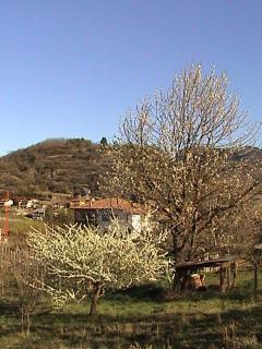 vista panoramica sul dos S. Agata adatto per brevi escursioni
