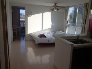 KomazawaOlympicPark 2bedroom3bed wifi, Meguro