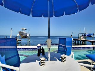 Clearwater Florida area's best kept secret, GULF FRONT 80FT LAP POOL AND WIFI