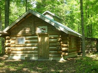 Secluded Cabin on Your Own Private Lake
