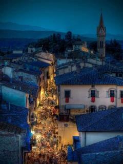 Il borgo visto dalla torre Guinigi