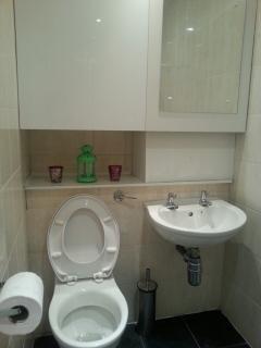 Bathroom_Toiet