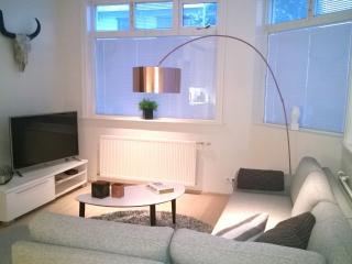 Luxury apartm. with Rental Car Incl., Reykjavik
