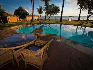 Luxury Cebu Beach House