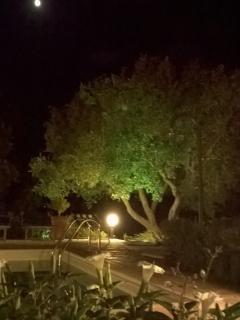 Resort Caelium - outdoor