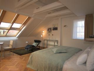 Karlova 2bedroom apt. 42, near the Charles Bridge, Praga