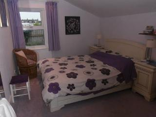 User Profile Image Pretty Double room in house, Hove