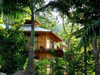 Casa Amorosa, Dominical