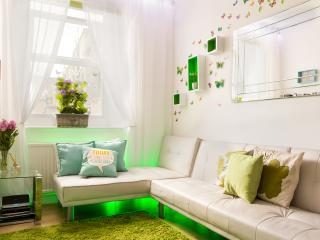 Beautiful design apartment in heart of London