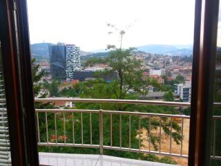 Beautiful View of Sarajevo Center with Parking