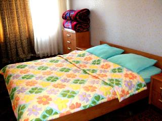 Safe and Cozy Home in Bishkek
