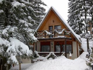 TraveLand Villas Poiana Brasov - Four-Bedroom Vill