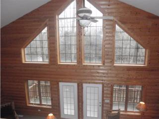 Grand Bear Resort Luxury Cabin, Utica