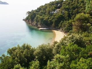 Paris House Skiathos (Kalamaki), Private Beach (1)