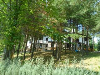 SAPANCA DAILY RENTAL CHALET WİTH SWIMMING-POOL, Sapanca