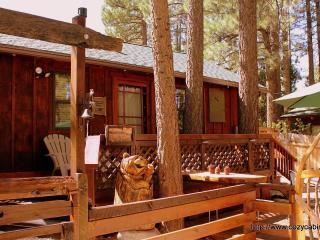 Simply Irresistible!  Newly Renovated Rustic Cabin, Big Bear Lake