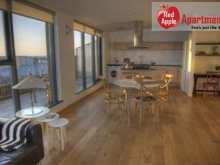 Modern penthouse apartment - 6491, Reykjavik