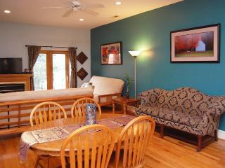 Tippy Top - spacious and fun Main St. Apartment