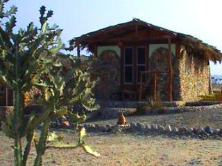 Deep South Diving Holidays - Chalets on Fullboard, Marsa Alam