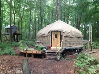 Forest Yurt near Bruges, Oostkamp