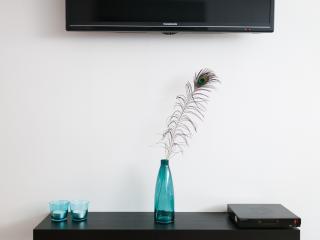 Satellite TV, DVD, fast Internet, Wi-Fi, Chromecast