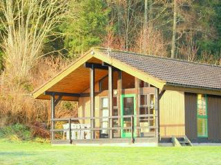 Scandaniavian lodge with loch and woodland views. Great balcony to watch the world go by.