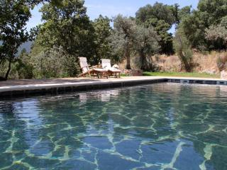 Marvao -  Wonderful Eco Apartments in Natural Park Paradise