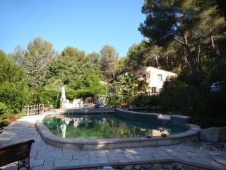 Pretty one-bedroomed flat , pool,  20 mins beaches, Cassis