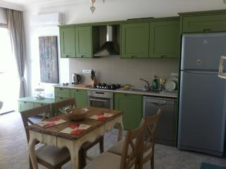1 bedroom rental in North Cyprus, Kyrenia