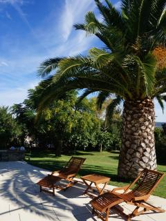 or just lie back and sunbathe under a palm tree ........